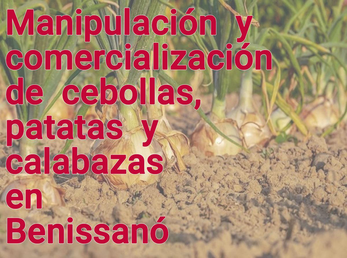 Manipulación y comercialización de cebollas, patatas y calabazas